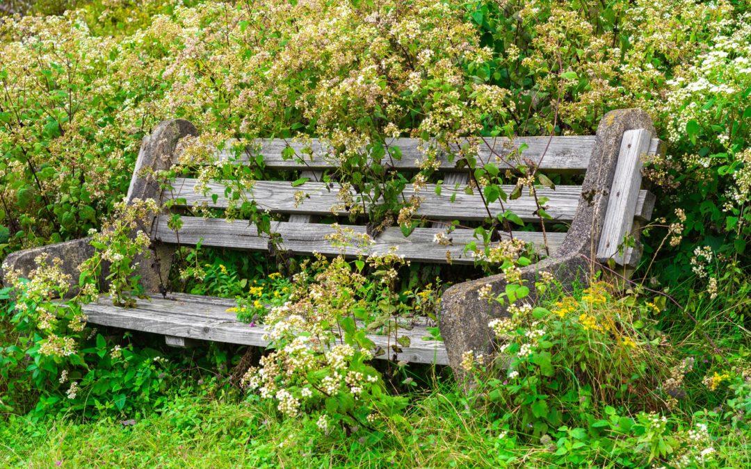 Tackling Weeds