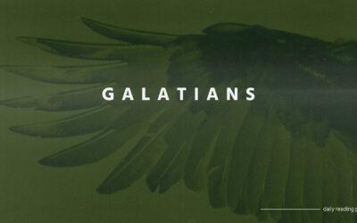 Day 12 – Galatians 6:11-18